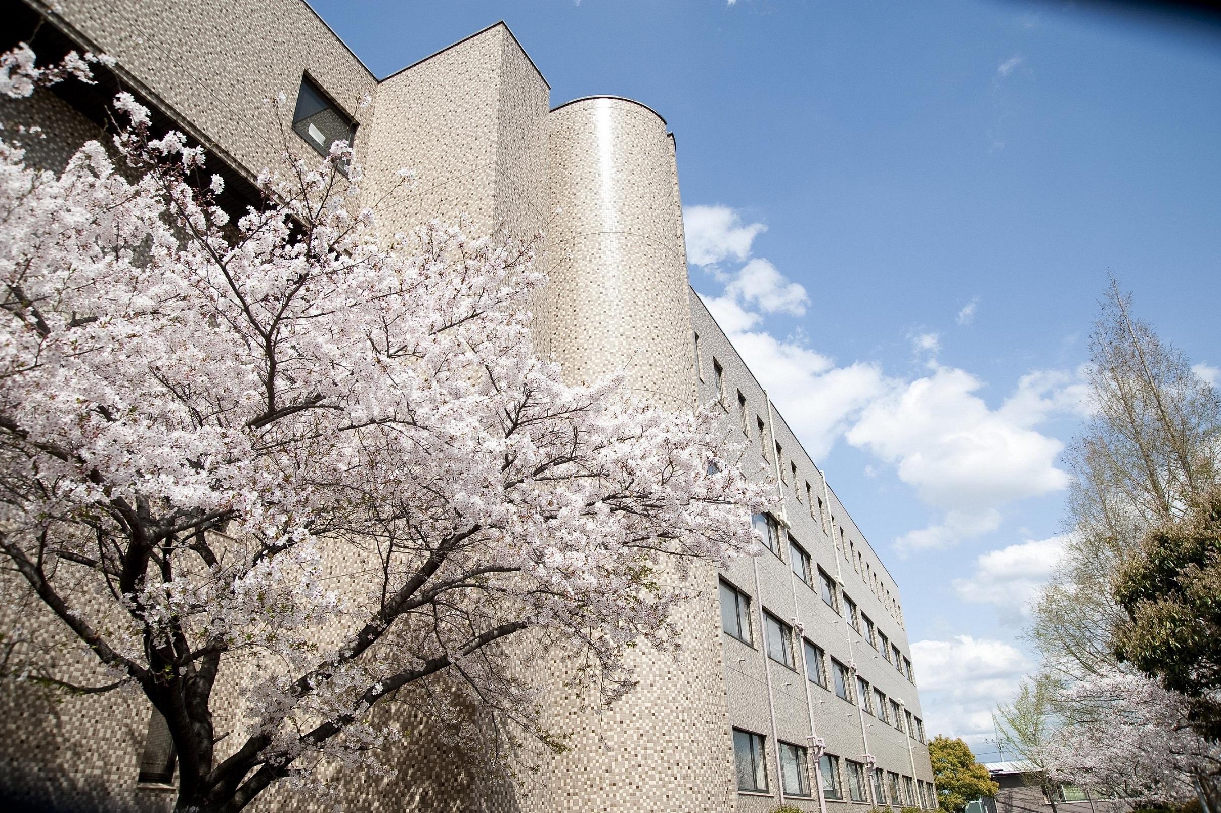 大学 藍野