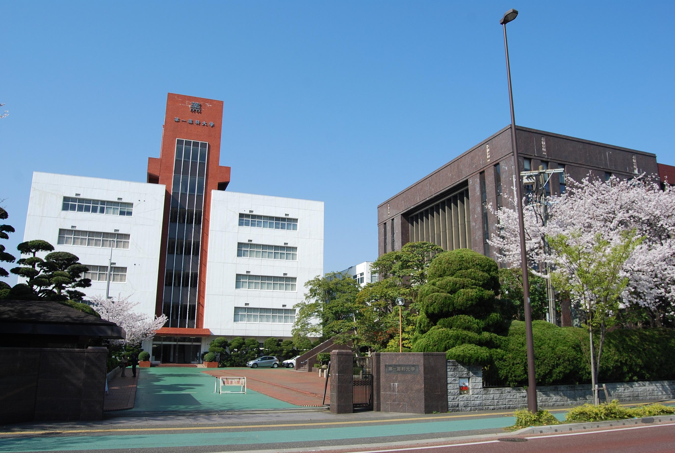 第 薬科 福岡 大学 一